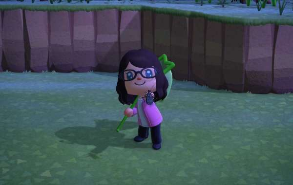 Animal Crossing Items understand you could do