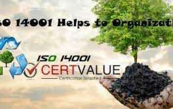 Where does ISO 14001 fit into your organization?